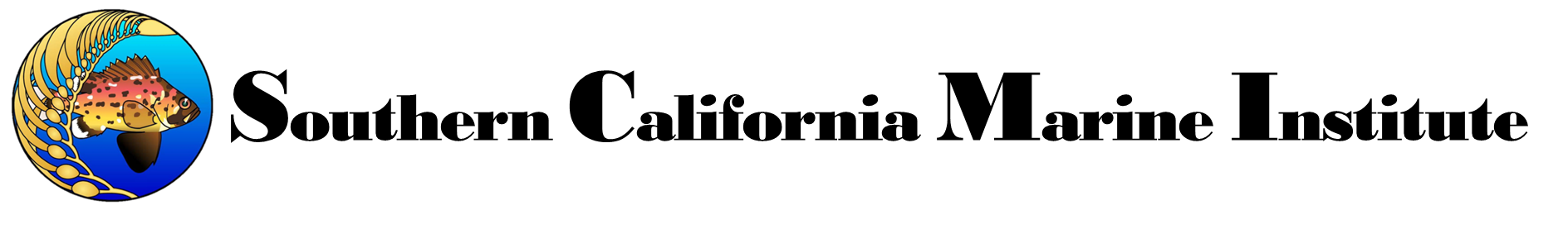 scmi.net Logo